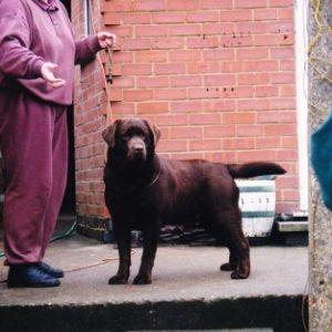 BOOTHGATE犬舎