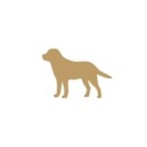 家庭犬トレーニングを修了したワンちゃん